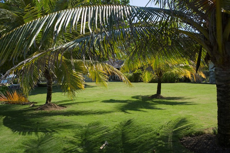 Jamaica Villas for Golfers from WIMCO Villas